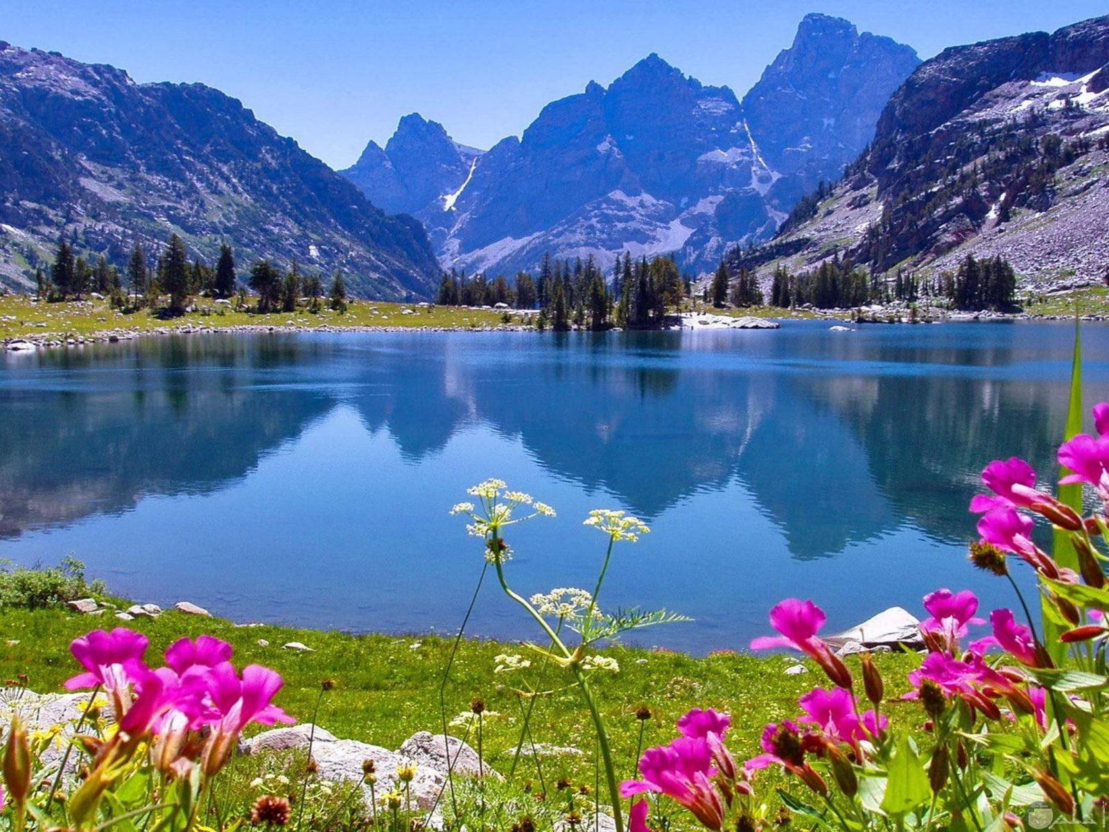 اجمل جبال الألب تجميعي