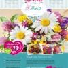 3 فلايرات محل زهور مفتوح للتعديل عليه , psd flyer , فلاير cmyk , ملفات مفتوحة للدعاية والاعلان جديدة 2015