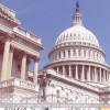 the white house >> البيت الابيض 1412606734186.jpg