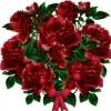 اهدي ورده لمن احببت 1422555228054.jpg