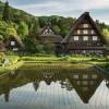 قرية شيراكاوا الريفية اليابان
